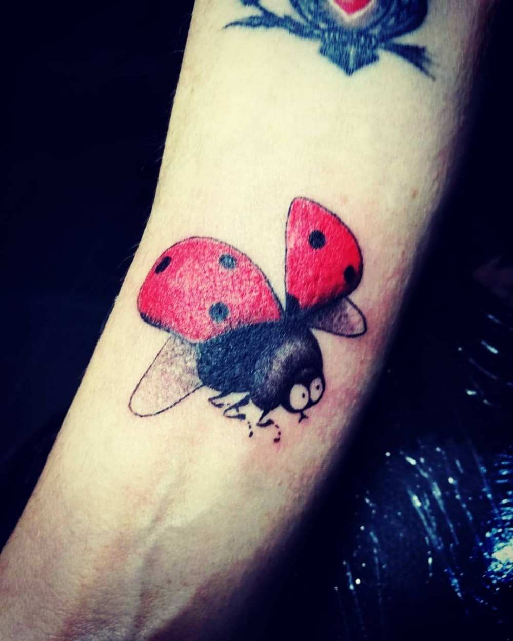 """How To Get Good Luck in 2020? Get Inspired With These 27+ Miraculous Ladybug Insect Tattoo Ideas! traditional ladybug tattoo realistic ladybug tattoo ladybug tattoos meaning ladybug tattoo with name ladybug tattoo watercolor ladybug tattoo simple ladybug tattoo outline ladybug tattoo for guys small ladybug tattoo black and white ladybug tattoo behind ear ladybug tattoo on wrist ladybug and flower tattoo ladybug outline tattoo miraculous ladybug tattoo ladybug tattoo black and white ladybug and butterfly tattoo ladybug tattoo realistic ladybug tattoo on shoulder simple ladybug tattoo black and white minimalist ladybug tattoo ladybug minimalist tattoo flower of life tattoo ladybug drawing ladybug meaning ladybug tattoo black black and white ladybug"""