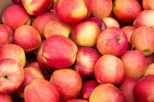 Closeup to Pink Apples