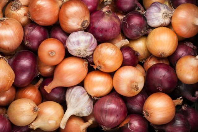 autumn vegetables crop background onions garlic top view